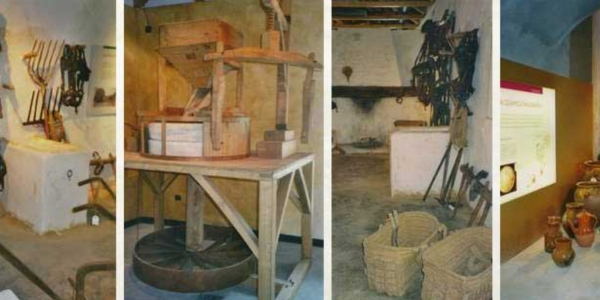 Agricultural props. Daimiel regional museum, Ciudad Real